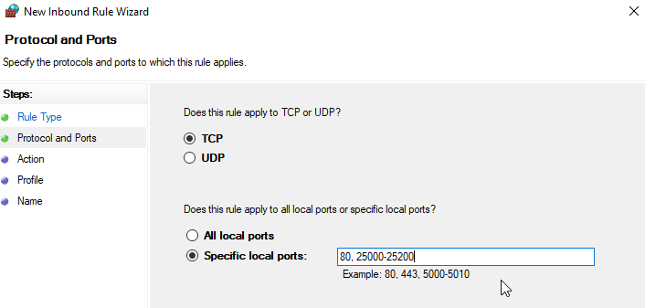 Selecting TCP and specifying ports